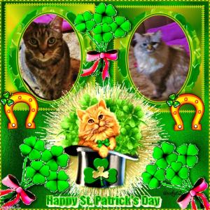 Happy St. Patrick's Day tu you frum Meez and Lexi.