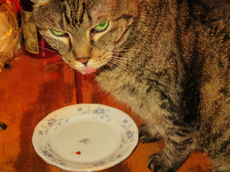 Lexi licks her lips and the plate clean
