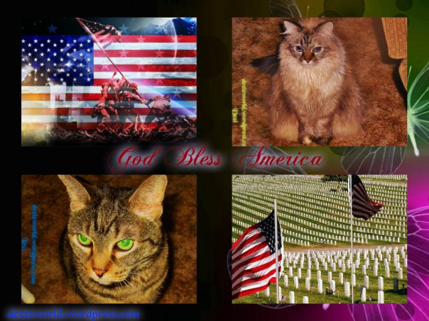 God Bless America!!! Fank yous tu ow twoops. *Salute*