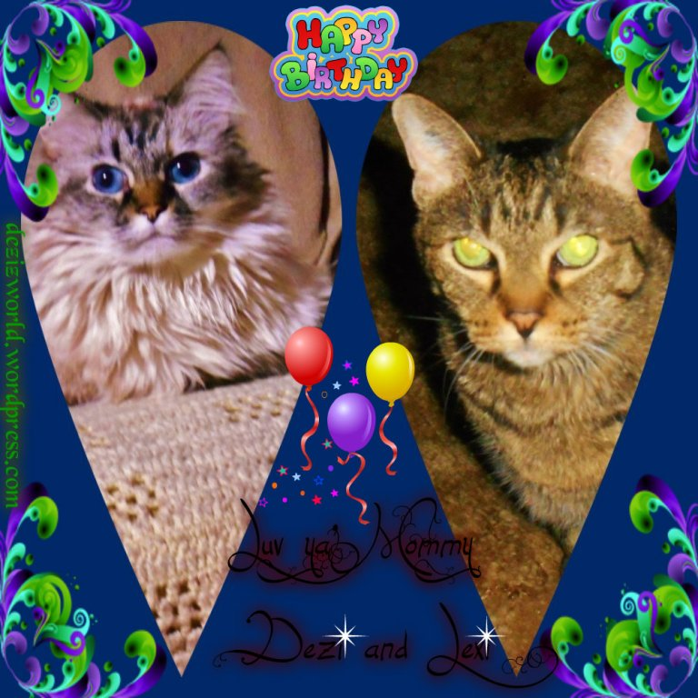 Happy Meowday Mommy!!! Weees Luv yous verrrrrry much.