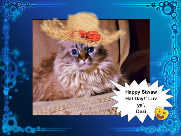 Meez helped mommy pick meez out a cute giwly hat.