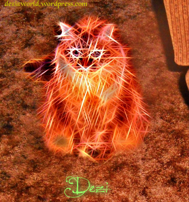 Meez finks dis is so cool. Meez looks like 'lectwicity. MOL