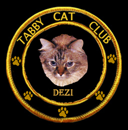 Meez in da Tabby Cat Club!!