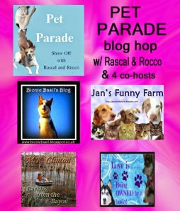 Meez wus featuwed in da Blog Hop!!