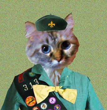 Bobcat Dezi wepowtin' tu sewve.  *Salute*