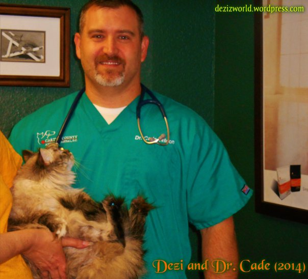 Meez luvs Dr. Cade but hims wusn't takin' any chances. MOL