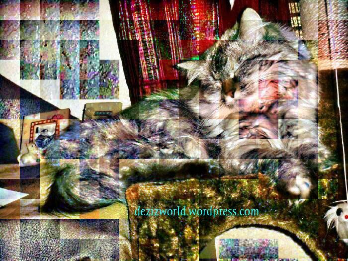 dw Dezi sleeping tree white filter