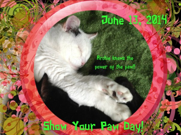 Show your paw day!!
