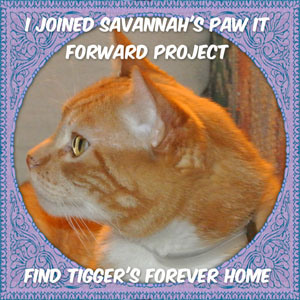 paw-it-forward-badge-side-bar-for-post