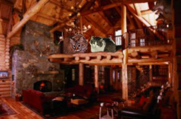 Here's me and Andy at da bayou lodge where where we all stayed  last night. Sum of da scouts camped in tents, but Andy and me stayed in da lodge. (seperate tooms of course.) Meez not dat kinda ladycat.