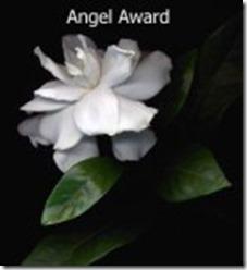 Awards (2)