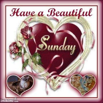 BEAUTIFUL SUNDAYLexi,Dezi