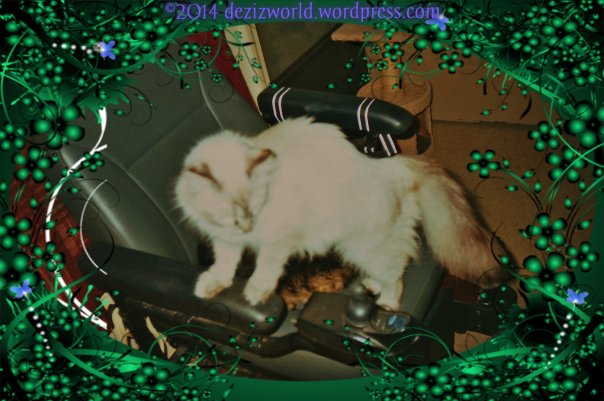 now let me see ifin me got this stwaight. Me puts meez mouff on this joystick and bites down and pushes it furward, wight?