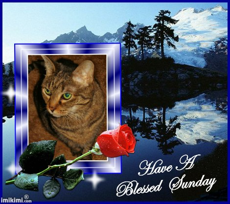 Blessed Sunday, Lexi - 2HEoW-15Y - normal