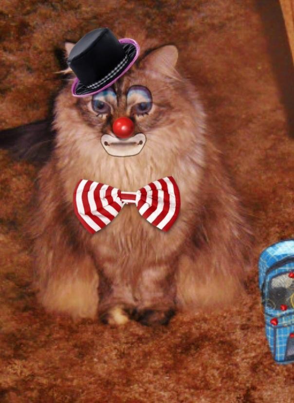 Dezi da clown