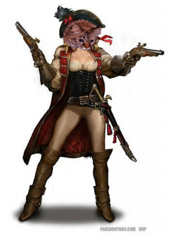 Dezi Pirate