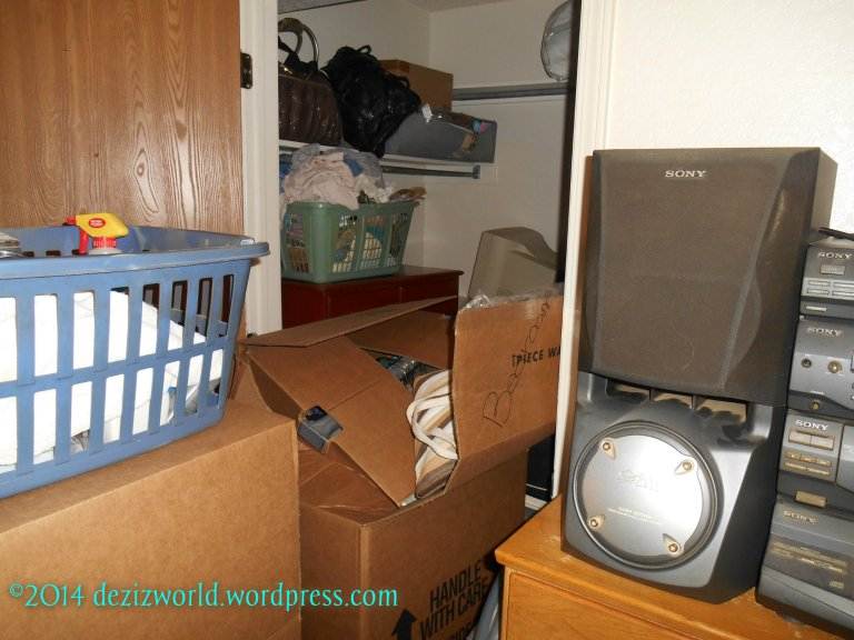 dw bedroom closet