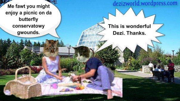 0DA butterfly picnic