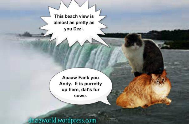 0DA Falls Beach