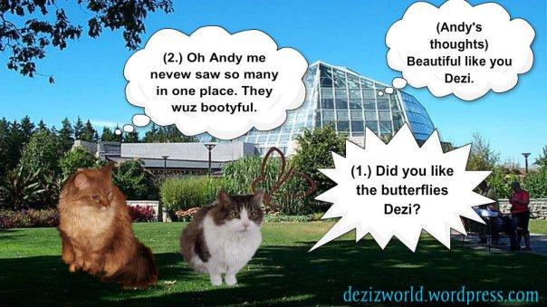 0DA Falls Butterflies