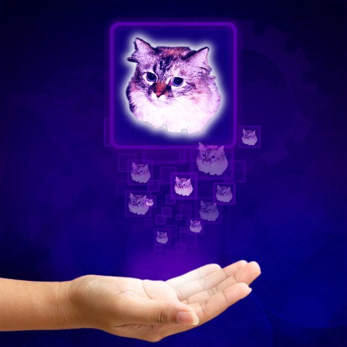 0Dezi hpurple hologram