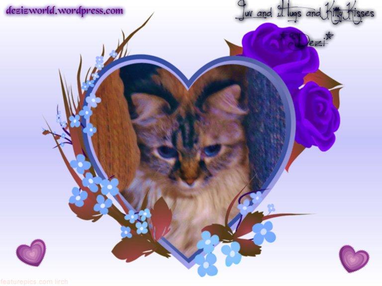 0Dezi kitty kisses hearts