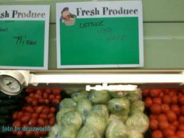 0dw lettuce