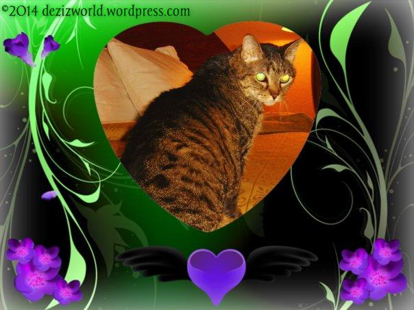 0dw Lexi green heart