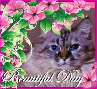 Dezi Beautiful Day - 2HEoW-1aB - normal
