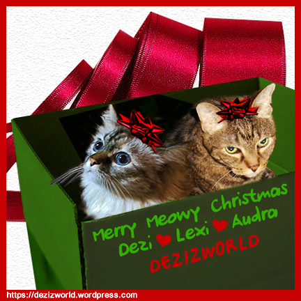 DezizWorld Ecard and Post Holiday 2014