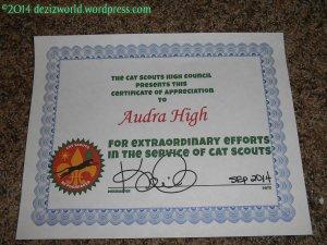 dw award