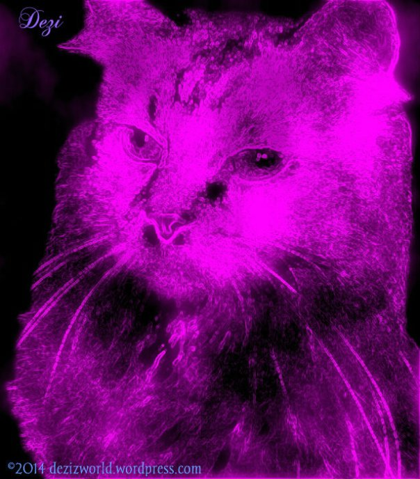 0dw Dezi neon glow