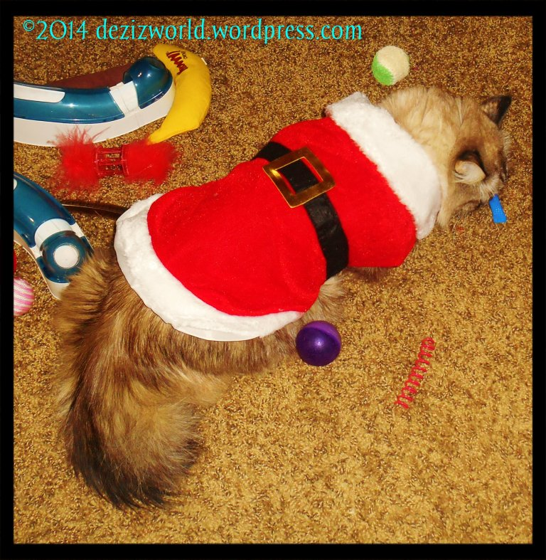 0dw Dezi Santa play