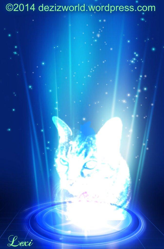 0dw Lexi hole Light
