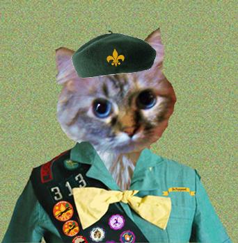 OMC Lookit meez new uniform. Me wuz purrmoted to Cougar and me had to get meez badge sewn onto meez  sash.