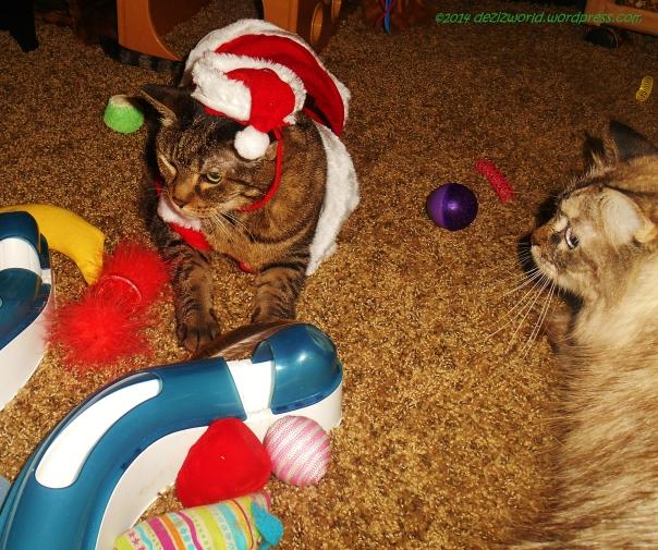 dw Lexi as Santa 2