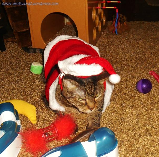 dw Lexi as Santa