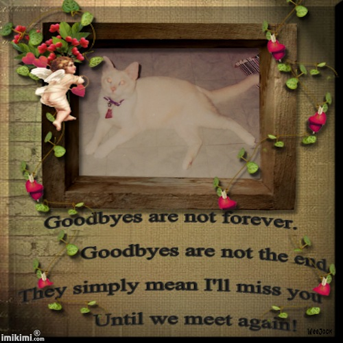 Goodbyes are not ForeverLucky - 2HEoW-16I - normal