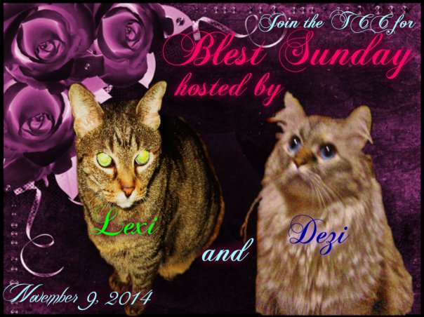 Purrlease join us and post yous Blessings.