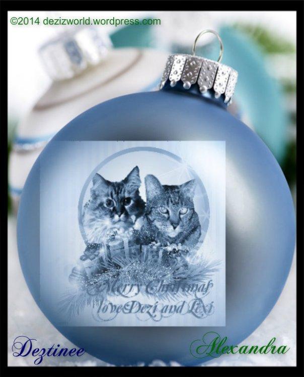 0de Dezi n Lexi blue christmasball