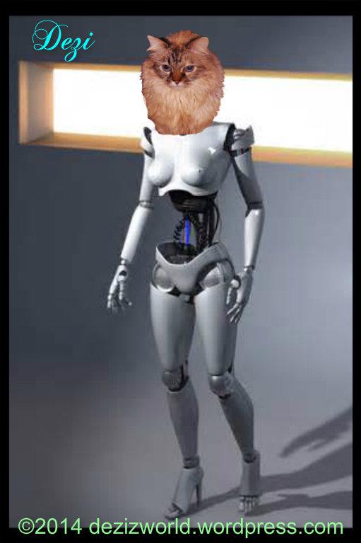 0dw Dezi robot