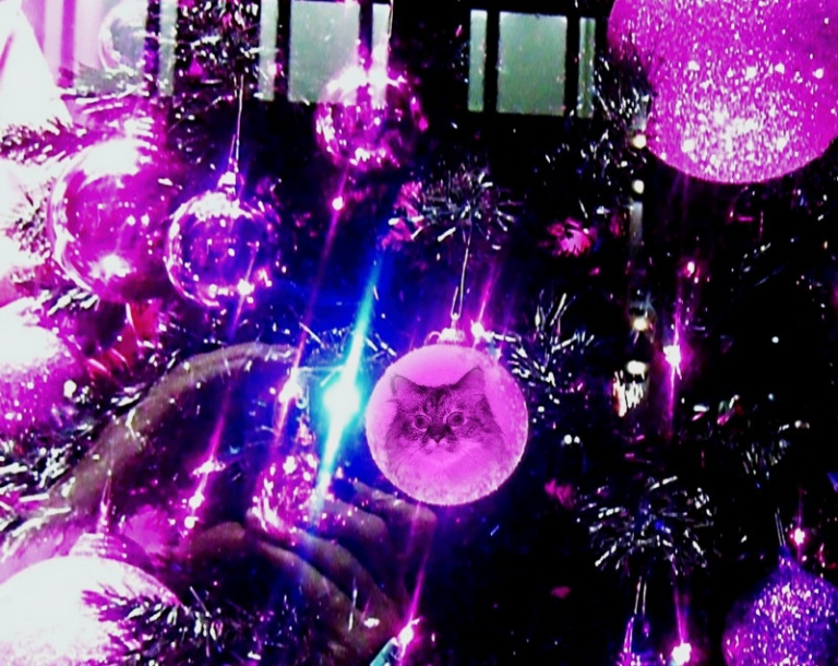 Guess meez ornament will hav to hang here on da blog. MOL