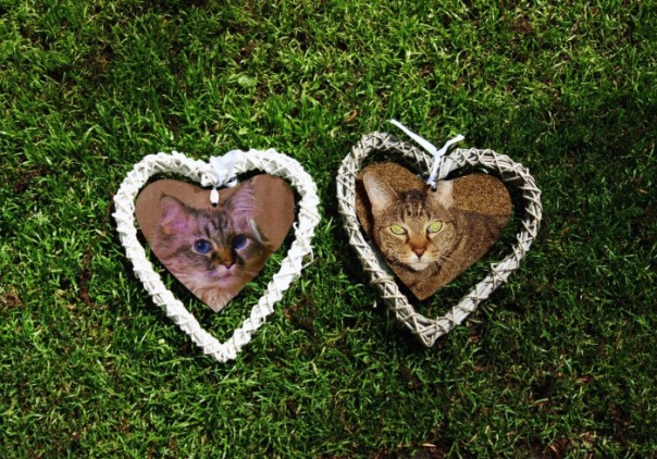 Mommy sez weez be da 2 sides of hers heart.