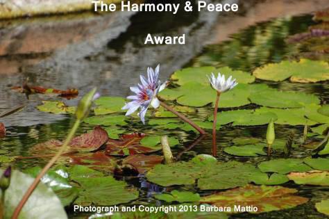 Harmony & peace Award hairballexpress12-14