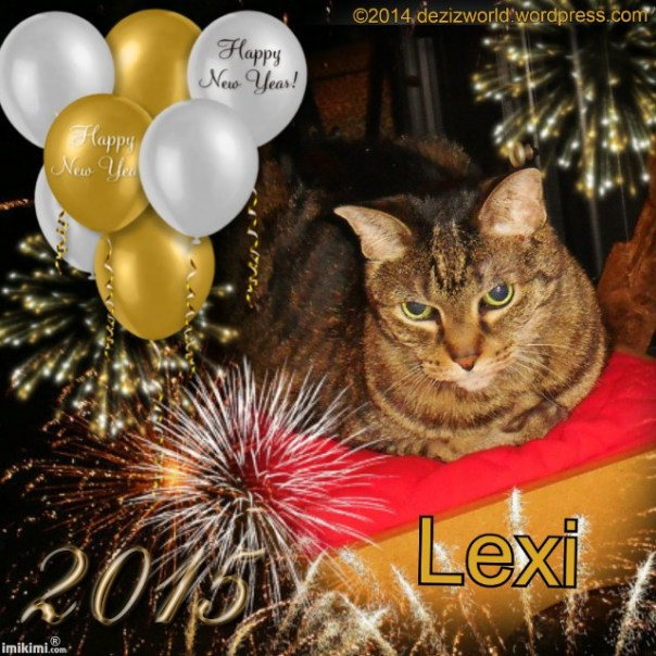 Lexi 2015Happy New Year - 2HEoW-1dq - normal