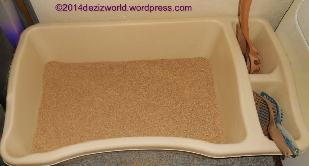 litterbox with SwheatScoop