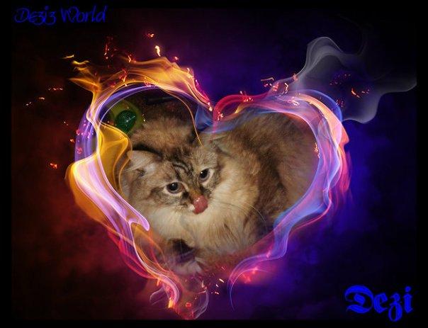 0dw Dezi abstract heart