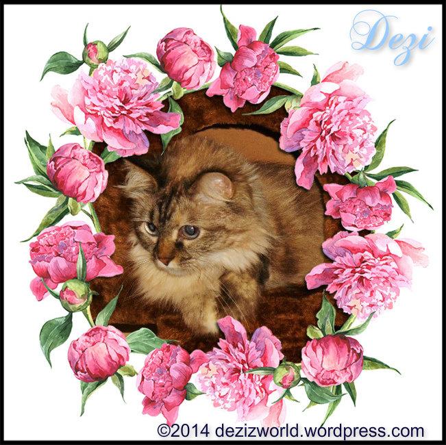 0dw Dezi floral wreath