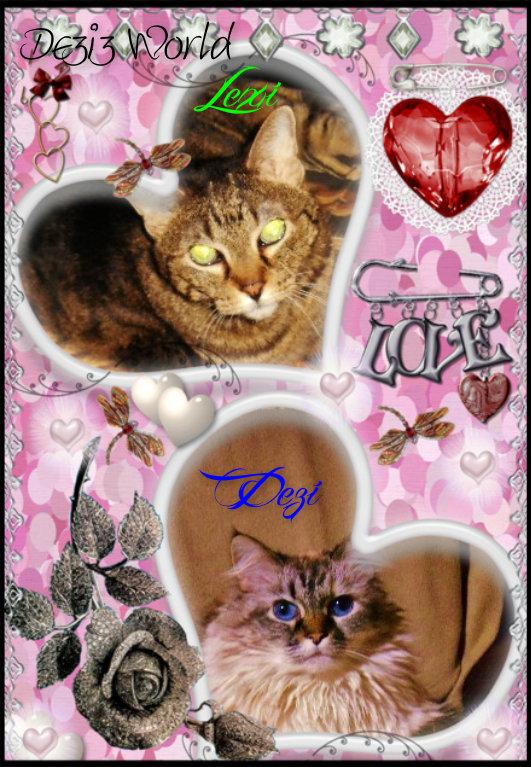 0dw Lexi n Dezi Love hearts