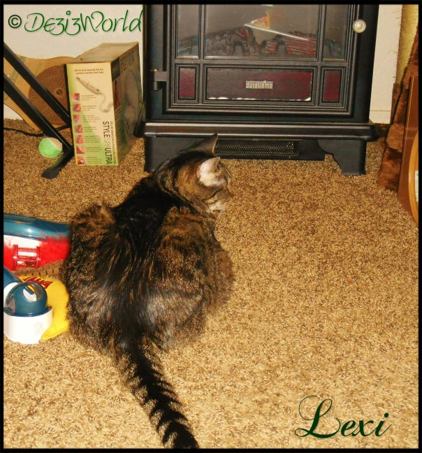 0dw Lexi with fireplace